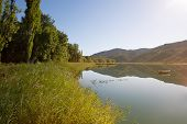 picture of marshes  - Marsh spectacular landscapes of dams and forests of La Alcarria Guadalajara Spain  - JPG
