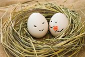 picture of human egg  - Eggs with faces  - JPG