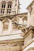 image of gargoyles  - Detail of one gargoyle in the Cathedral of Burgos Spain - JPG