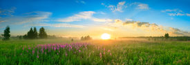 stock photo of spring-weather  - landscape with the sunrise a blossoming meadow and fogpanorama - JPG