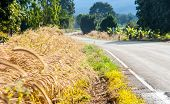 foto of long winding road  - landscape road in rural of Thailand to show lifestyle - JPG
