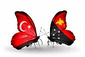 image of papua new guinea  - Two butterflies with flags on wings as symbol of relations Turkey and Papua New Guinea - JPG