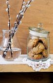 picture of pussy  - Muesli cookies in the jar and branches of pussy - JPG