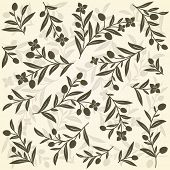 foto of olive branch  - Old background with olive branches - JPG