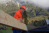 picture of purlin  - A builder positions a large purlin on the roof of a building - JPG