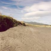 stock photo of dune grass  - Sand dune - JPG