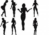 image of curvaceous  - Silhouettes of women with curvaceous and erotic poses on a white background - JPG
