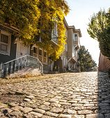 foto of century plant  - Street of the Cold Fountain or Sogukcesme Sokagi is a small street with historic houses in the Sultanahmet neighborhood of Istanbul - JPG