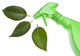 stock photo of environmentally friendly  - Green Spray Bottle with Leaf Spray for Environmentally Friendly Natural Cleaning Concepts - JPG