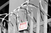 image of razor  - Razor wire on top of fence - JPG