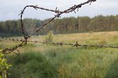 pic of barbed wire fence  - rusty barbed wire on farm - JPG