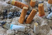 stock photo of butts  - close up of Cigarettes butt in ashtray - JPG