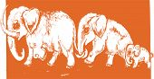 foto of mammoth  - graphic animal illustration mammoths family on orange background - JPG