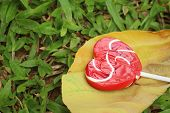 pic of valentine candy  - Candy valentines hearts on background of green grass - JPG
