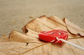 stock photo of valentine candy  - Candy valentines hearts on a brown leaf - JPG