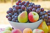 image of fruit bowl  - Bunch of fruit on the table  - JPG
