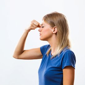 pic of sinuses  - Photo of a young woman is having pain in sinus - JPG