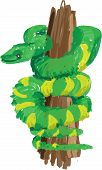 foto of green tree python  - digital illustration in the loose color style of a green tree snake - JPG