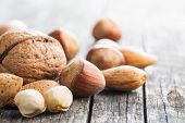 Different types of nuts in the nutshell. Hazelnuts, walnuts, almonds, pecan nuts and pistachio nuts  poster