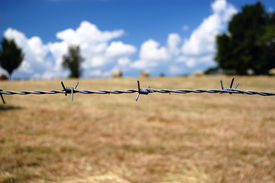 picture of barbed wire fence  - Barbed wire closeup over brown fields and cloudy blue sky - JPG