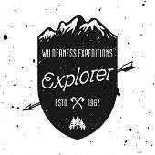Wilderness Expedition Vector Vintage Badge, Emblem, Label Or Logo With Mountains Shield And Grunge T poster