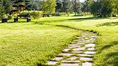 Beautiful Pathway In A Natural Park In Summer. Landscape With Scenic Winding Footpath In Sunlight. S poster