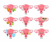 Cute Healthy Happy Women Uterus Organ Character Set Collection. Vector Flat Cartoon Illustration Ico poster