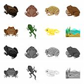Isolated Object Of Wildlife And Bog Sign. Set Of Wildlife And Reptile Vector Icon For Stock. poster