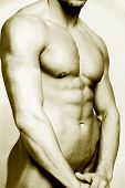 stock photo of adonis  - high contrast male torso - JPG