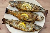 Three Grilled Trouts