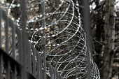 Metal Barbed Wire On Fence