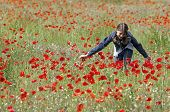 Girl With Poppies Stroking