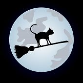 image of sweeper  - Black cat flying on a sweeper on the night sky - JPG