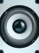image of subwoofer  - The Modern subwoofer speaker - JPG