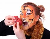 pic of tigers  - Girl tiger with the piece of raw meat - JPG