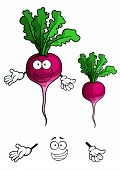 picture of beet  - Cheerful cartoon bright violet beet vegetable character with green sappy leaves and happy smile suited for healthy nutrition concept and vegetarian menu design - JPG