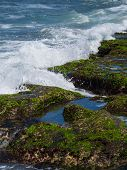 picture of tanah  - Amazing landscape at Tanah Lot temple - JPG