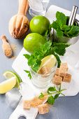 picture of mojito  - Ingredients for making mojitos - JPG