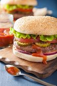 pic of beef-burger  - burger with beef patty lettuce onion tomato ketchup - JPG