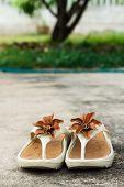 pic of semen  - brown flower on shoes on floor soft focus photo stock - JPG
