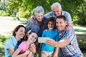 stock photo of extended family  - Extended family taking a selfie in the park on a sunny day - JPG