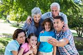 foto of extended family  - Extended family taking a selfie in the park on a sunny day - JPG