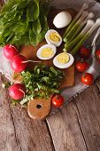 stock photo of sorrel  - Eggs radishes and sorrel for spring salad closeup - JPG