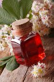 image of infusion  - Infusion of flowers chestnut in a bottle on the table - JPG