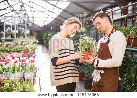 Cheerful attractive young woman with help of handsome man gardener choosing flowers in pot in garden