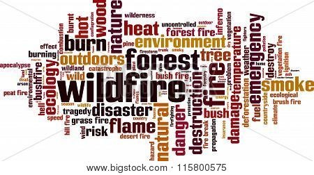 Wildfire Word Cloud