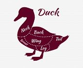 Постер, плакат: Typographic Duck Butcher Cuts Diagram