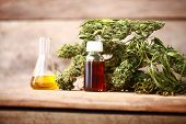 Green Leaves Of Medicinal Cannabis With Extract Oil On A Wooden Table poster