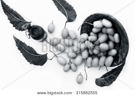 poster of Fresh Green Neem Fruit Of Indian Lilac Fruit In A Clay Bowl Isolated On White Along With Its Concent