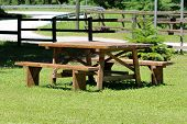 Wooden Table With Two Benches In Family House Backyard Surrounded With Green Grass Next To Paved Roa poster
